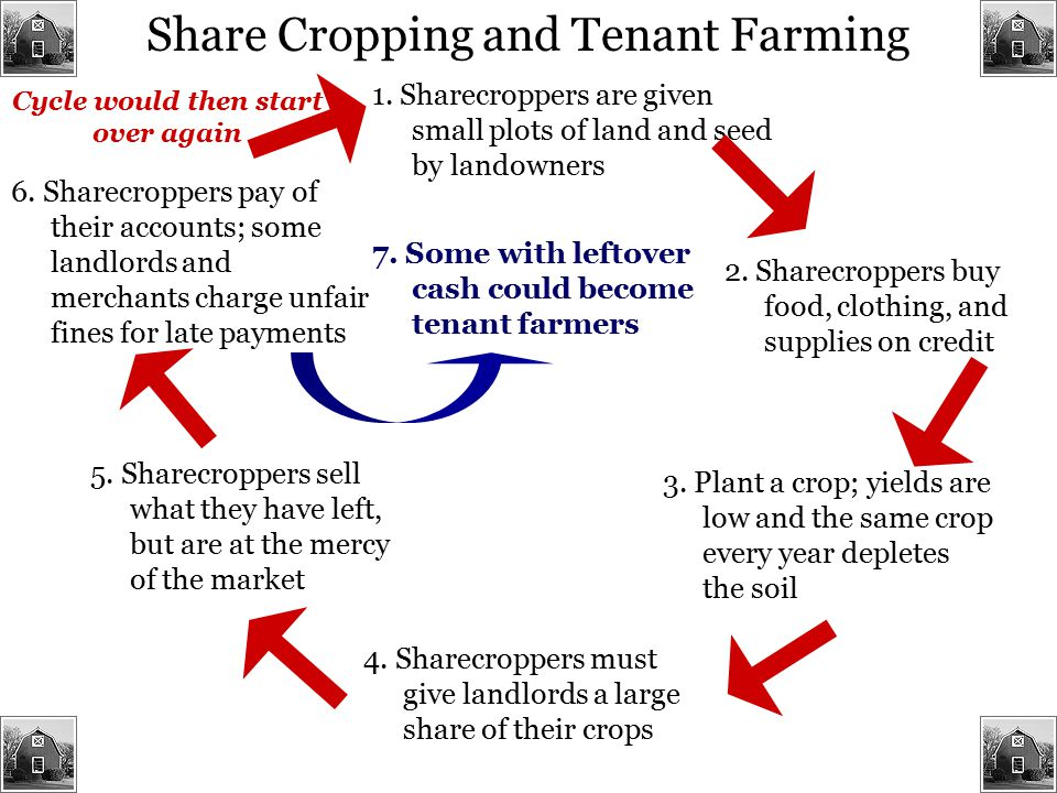 Share Cropping and Tenant Farming 1. Sharecroppers are given small plots of land and seed by landowners 2. Sharecroppers buy food, clothing, and suppl