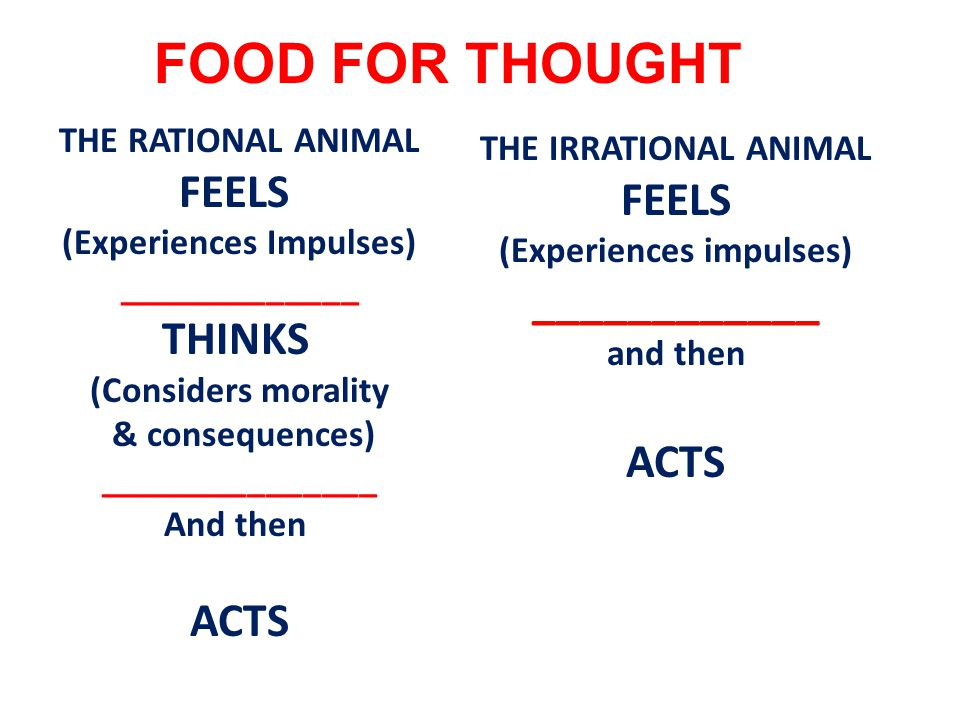 THE RATIONAL ANIMAL FEELS (Experiences Impulses) _____________ THINKS (Considers morality & consequences) _______________ And then ACTS FOOD FOR THOUGHT THE IRRATIONAL ANIMAL FEELS (Experiences impulses) ____________ and then ACTS