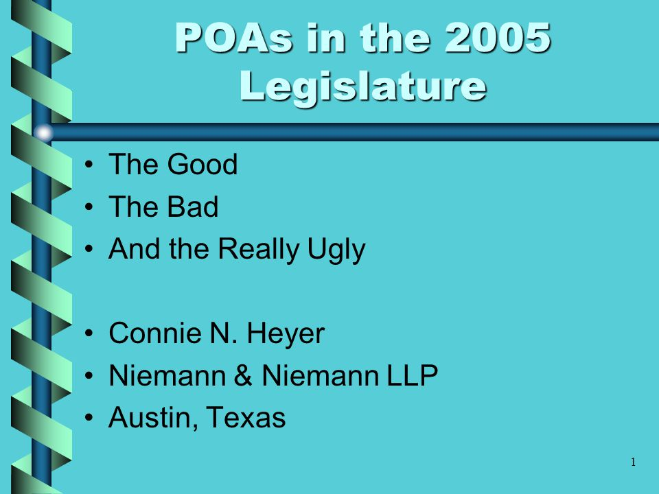 1 POAs in the 2005 Legislature The Good The Bad And the Really Ugly Connie N.