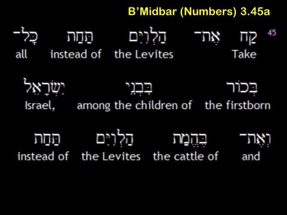 B'Midbar (Numbers) 3.45a