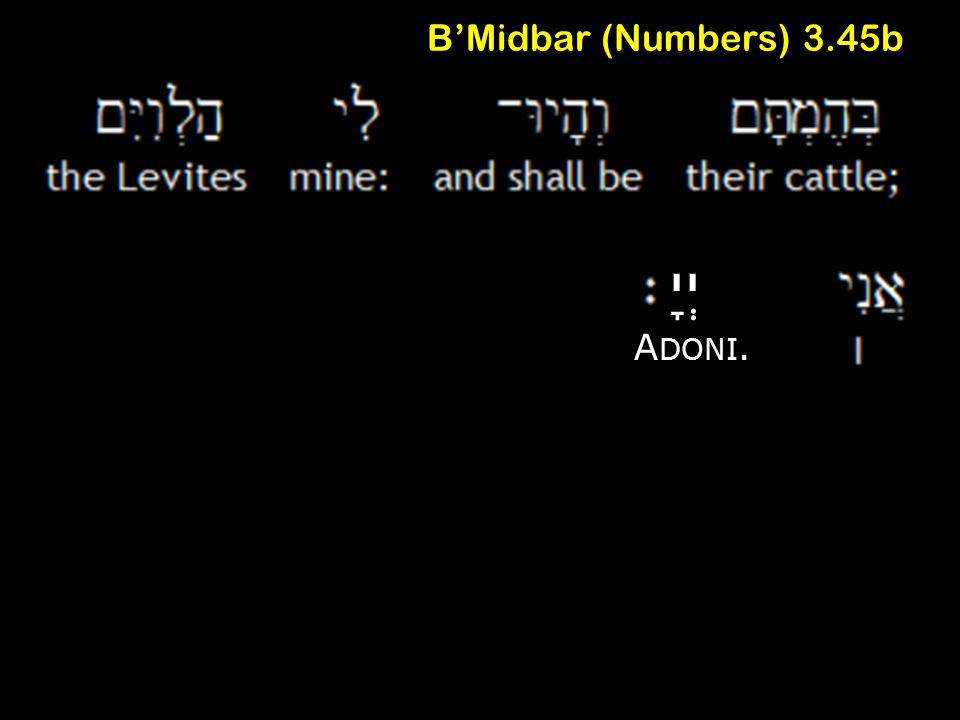 B'Midbar (Numbers) 3.45b יְיָ A DONI.