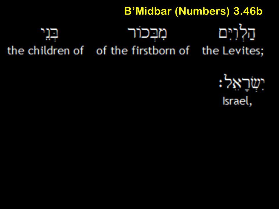 B'Midbar (Numbers) 3.46b