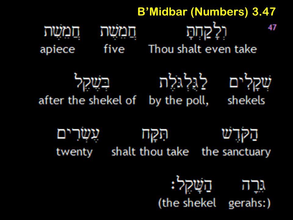 B'Midbar (Numbers) 3.47