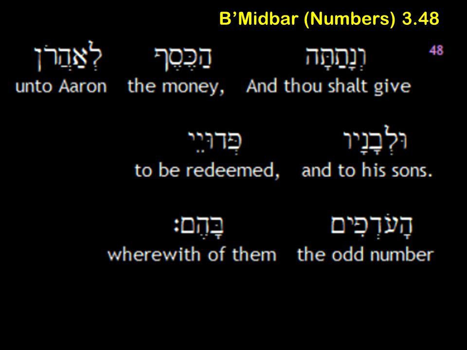 B'Midbar (Numbers) 3.48
