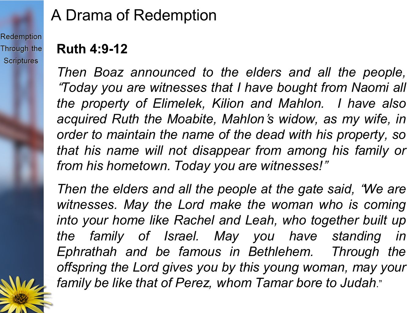 Redemption Through the Scriptures A Drama of Redemption Ruth 4:9-12 Then Boaz announced to the elders and all the people, Today you are witnesses that I have bought from Naomi all the property of Elimelek, Kilion and Mahlon.