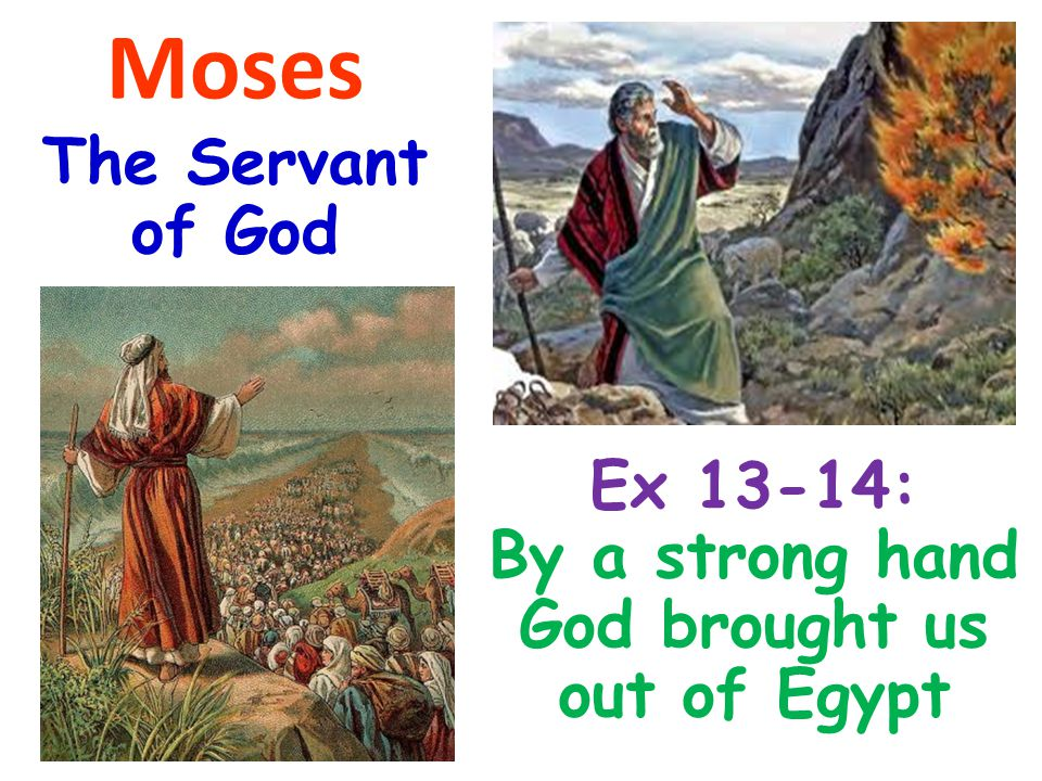 Moses The Servant of God Ex 13-14: By a strong hand God brought us out of Egypt