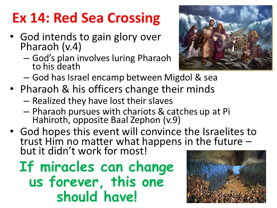 Ex 14: Red Sea Crossing God intends to gain glory over Pharaoh (v.4) – God's plan involves luring Pharaoh to his death – God has Israel encamp between Migdol & sea Pharaoh & his officers change their minds – Realized they have lost their slaves – Pharaoh pursues with chariots & catches up at Pi Hahiroth, opposite Baal Zephon (v.9) God hopes this event will convince the Israelites to trust Him no matter what happens in the future – but it didn't work for most.