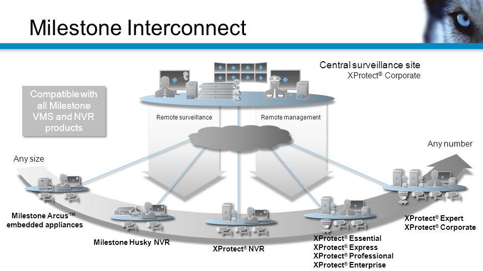 Milestone Interconnect Central surveillance site XProtect ® Corporate Any size Any number Remote managementRemote surveillance Milestone Arcus™ embedded appliances Milestone Husky NVR XProtect ® NVR XProtect ® Essential XProtect ® Express XProtect ® Professional XProtect ® Enterprise XProtect ® Expert XProtect ® Corporate Compatible with all Milestone VMS and NVR products