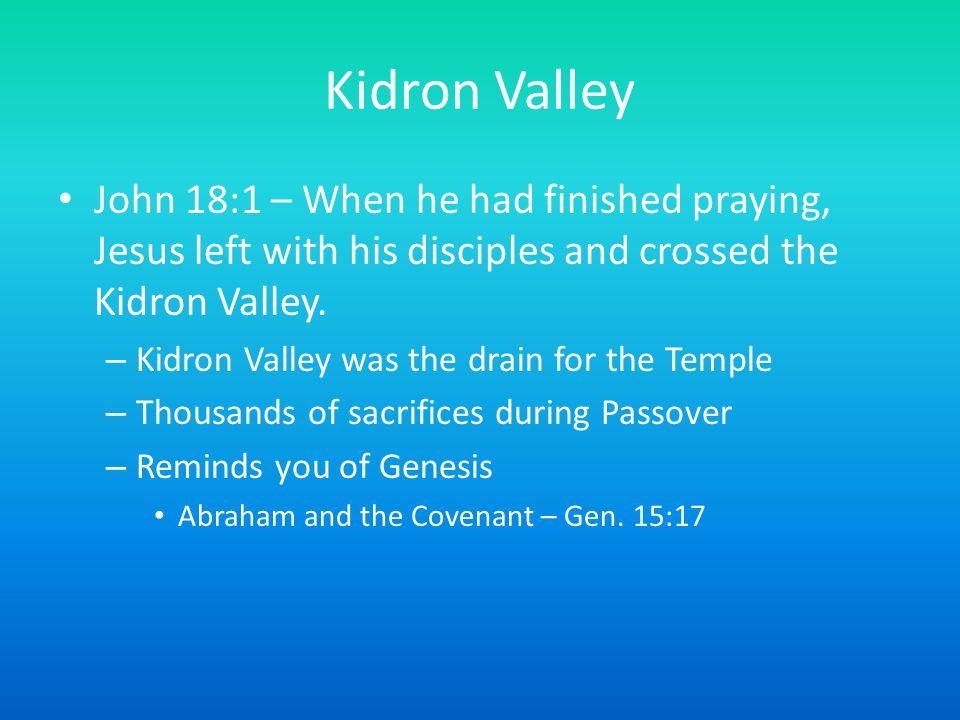 Temple Mount Kidron ValleyMount of Olives
