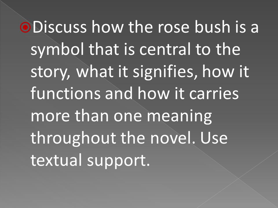  Discuss how the rose bush is a symbol that is central to the story, what it signifies, how it functions and how it carries more than one meaning throughout the novel.