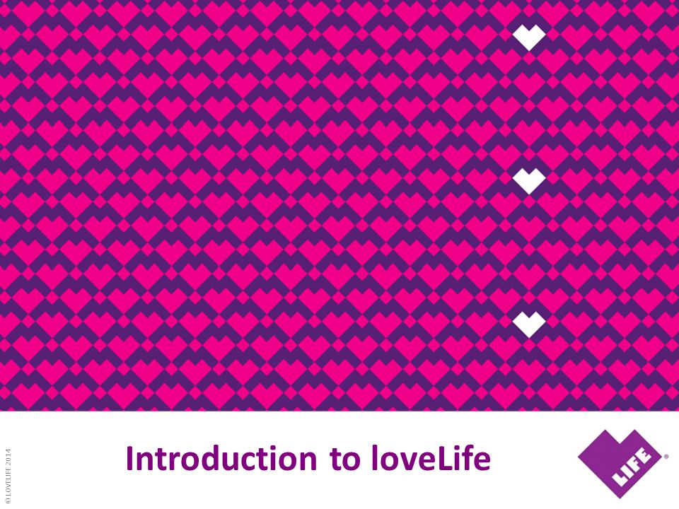© LOVELIFE 2014 Introduction to loveLife