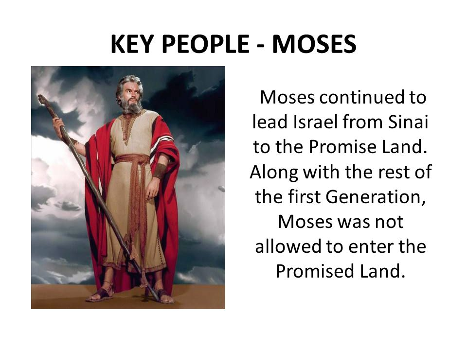KEY PEOPLE - MOSES Moses continued to lead Israel from Sinai to the Promise Land.