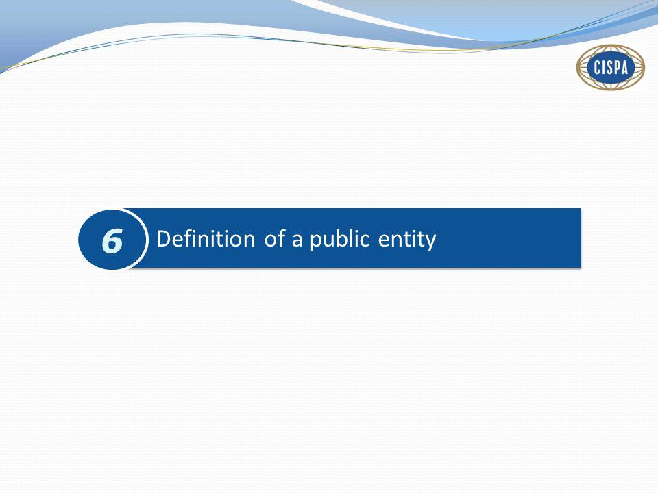 Definition of a public entity 6