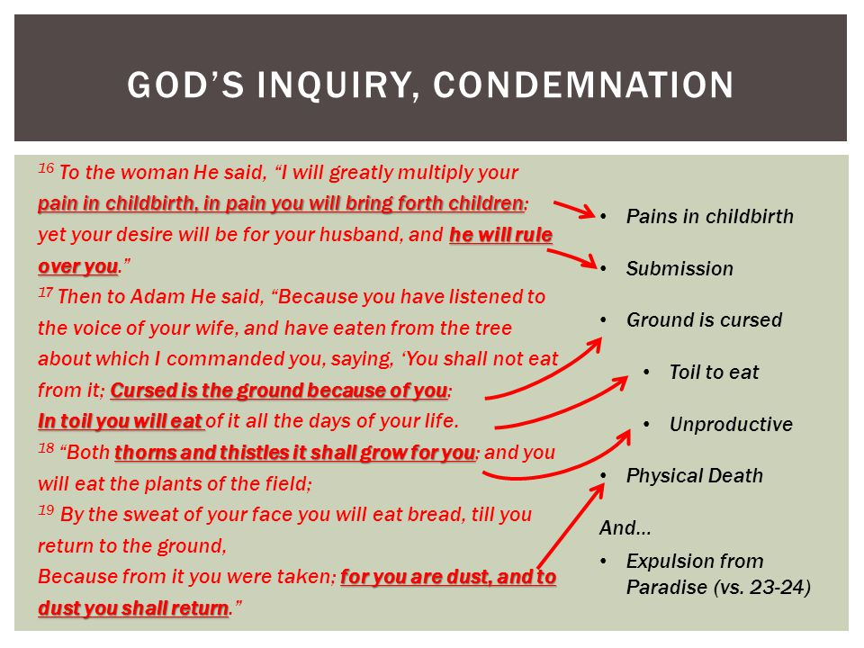 GOD'S INQUIRY, CONDEMNATION pain in childbirth, in pain you will bring forth children he will rule over you 16 To the woman He said, I will greatly multiply your pain in childbirth, in pain you will bring forth children; yet your desire will be for your husband, and he will rule over you. Cursed is the ground because of you 17 Then to Adam He said, Because you have listened to the voice of your wife, and have eaten from the tree about which I commanded you, saying, 'You shall not eat from it; Cursed is the ground because of you; In toil you will eat In toil you will eat of it all the days of your life.