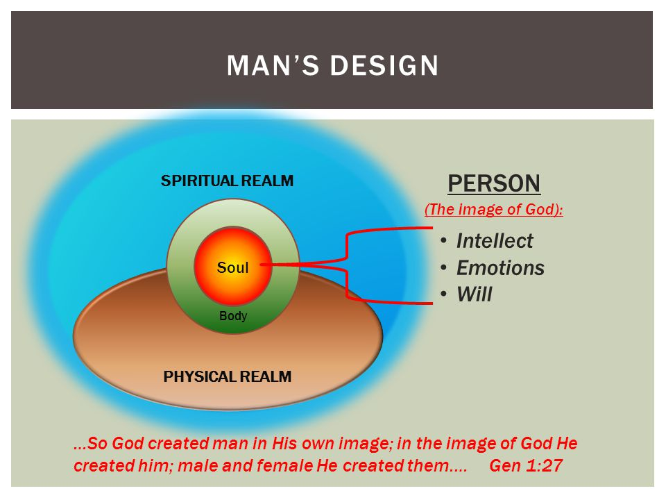 MAN'S DESIGN SPIRITUAL REALM PHYSICAL REALM Soul …So God created man in His own image; in the image of God He created him; male and female He created them.… Gen 1:27 PERSON (The image of God): Intellect Emotions Will Body