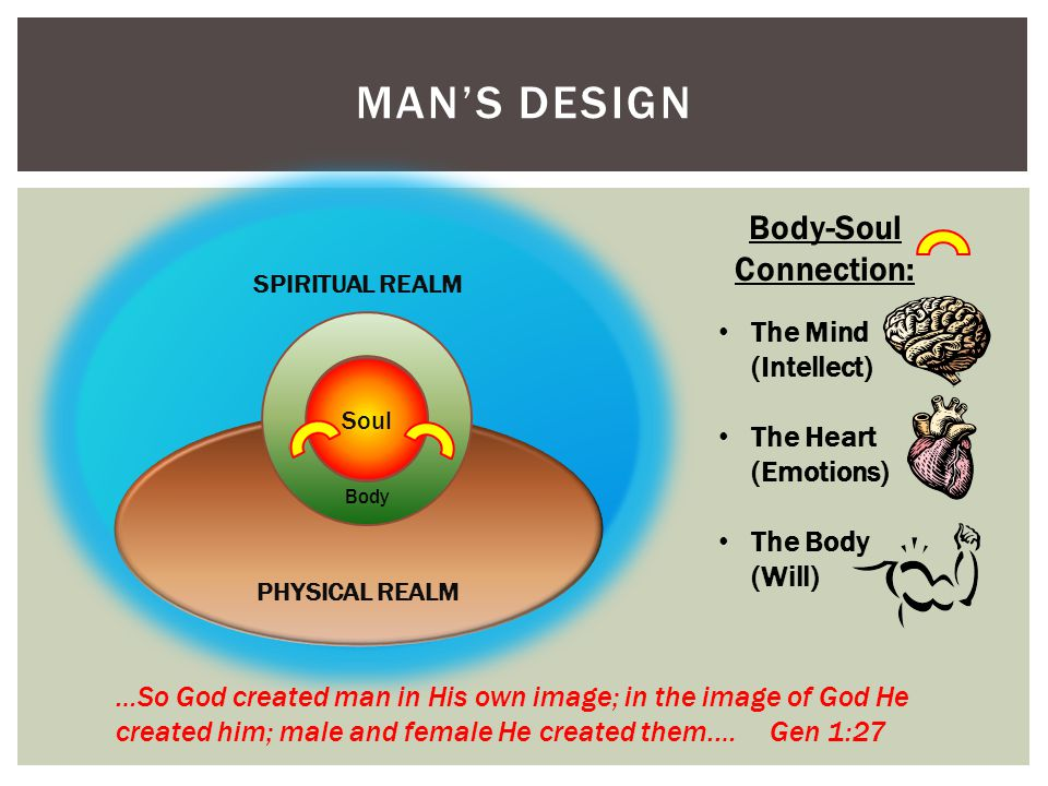 MAN'S DESIGN SPIRITUAL REALM PHYSICAL REALM Soul Body Body-Soul Connection: The Mind (Intellect) The Heart (Emotions) The Body (Will) …So God created man in His own image; in the image of God He created him; male and female He created them.… Gen 1:27