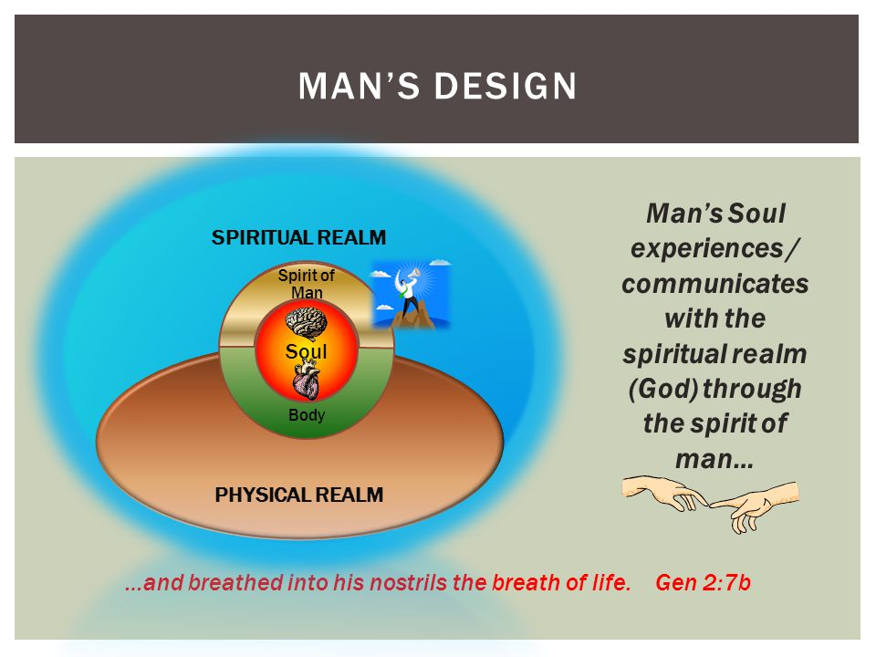 MAN'S DESIGN …and breathed into his nostrils the breath of life.