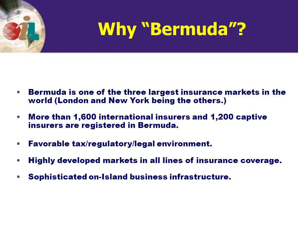 Why Bermuda .