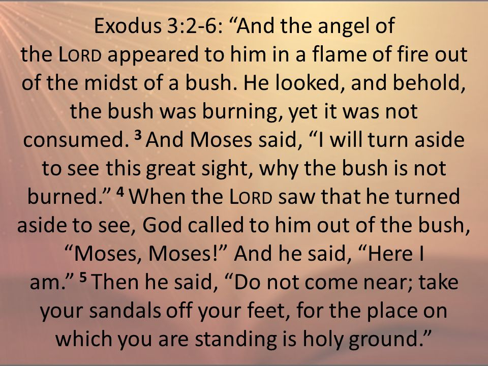 "Exodus 3:2-6: ""And the angel of the L ORD appeared to him in a flame of fire out of the midst of a bush. He looked, and behold, the bush was burning,"