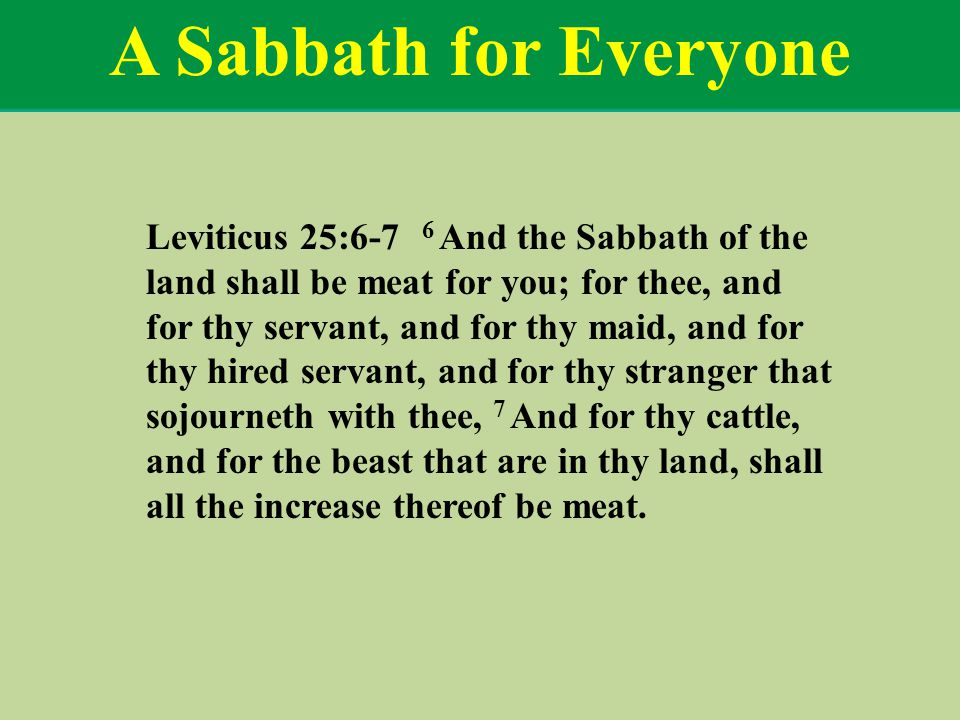 A Sabbath for Everyone Leviticus 25:6-7 6 And the Sabbath of the land shall be meat for you; for thee, and for thy servant, and for thy maid, and for thy hired servant, and for thy stranger that sojourneth with thee, 7 And for thy cattle, and for the beast that are in thy land, shall all the increase thereof be meat.