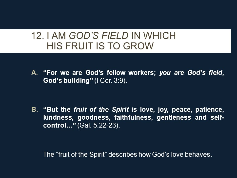 A. For we are God's fellow workers; you are God's field, God's building (I Cor.