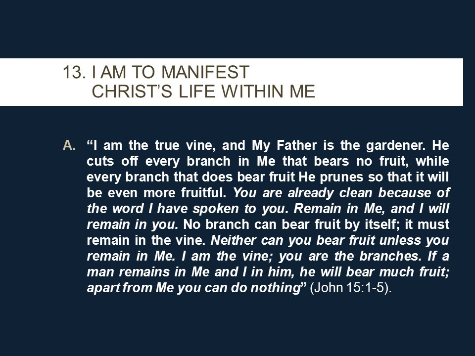 A. I am the true vine, and My Father is the gardener.