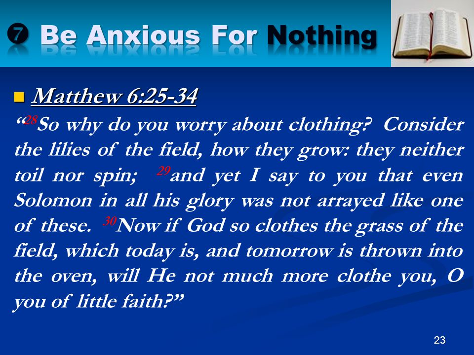 """Matthew 6:25-34 23 """" 28 So why do you worry about clothing? Consider the lilies of the field, how they grow: they neither toil nor spin; 29 and yet I"""