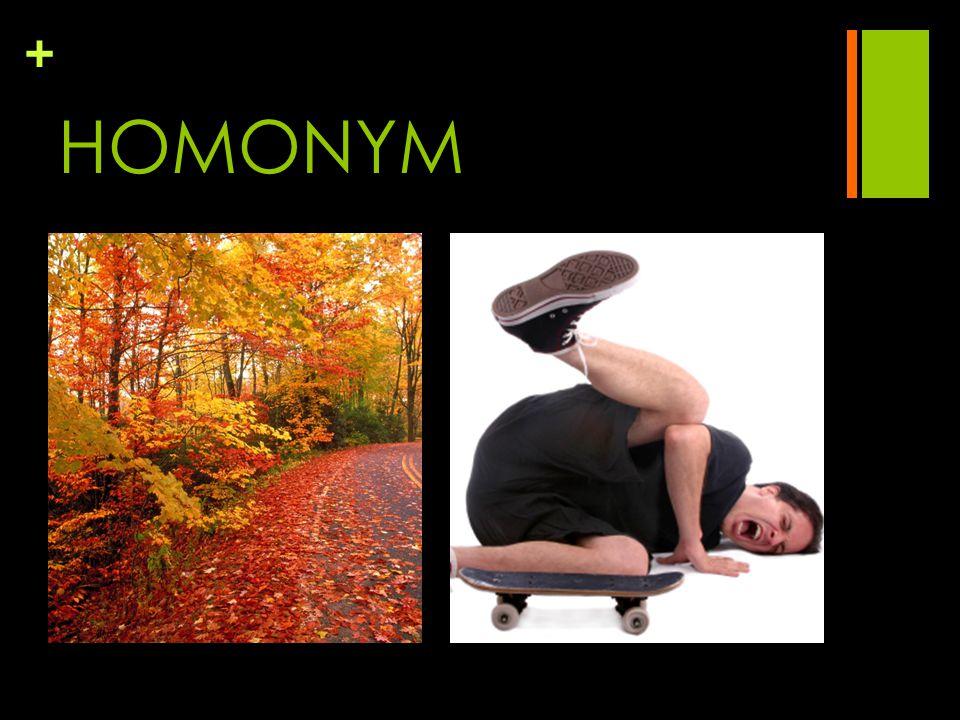 + HOMONYM