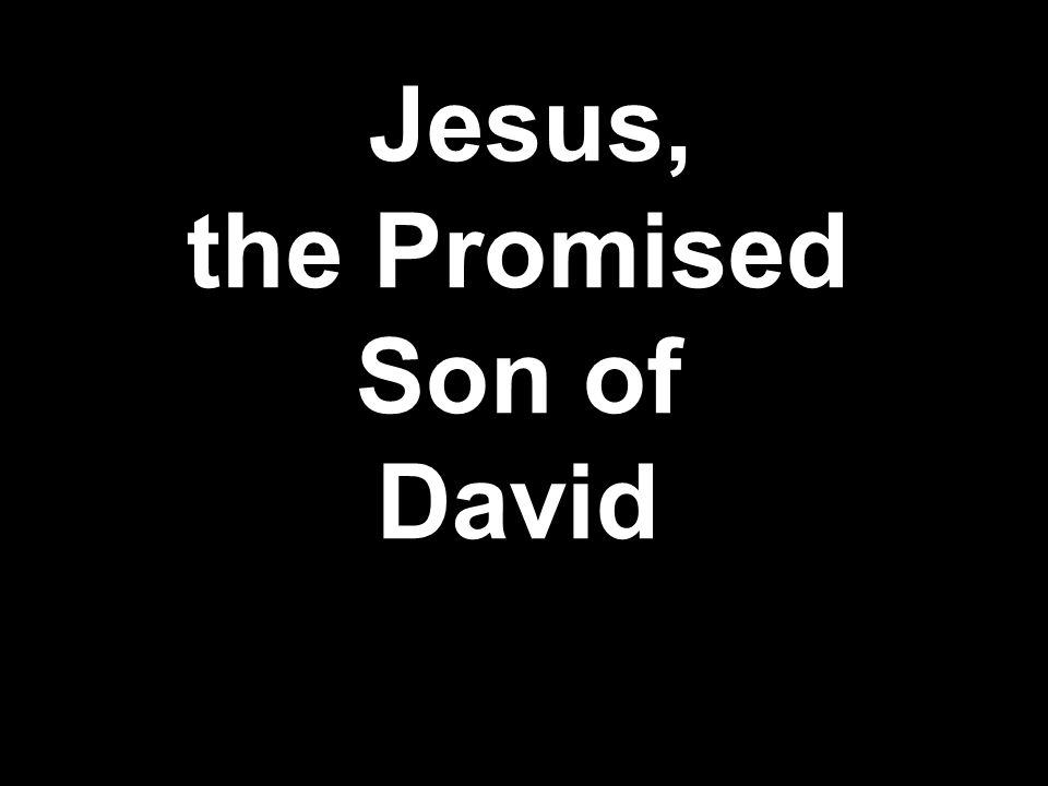 Jesus, the Promised Son of David