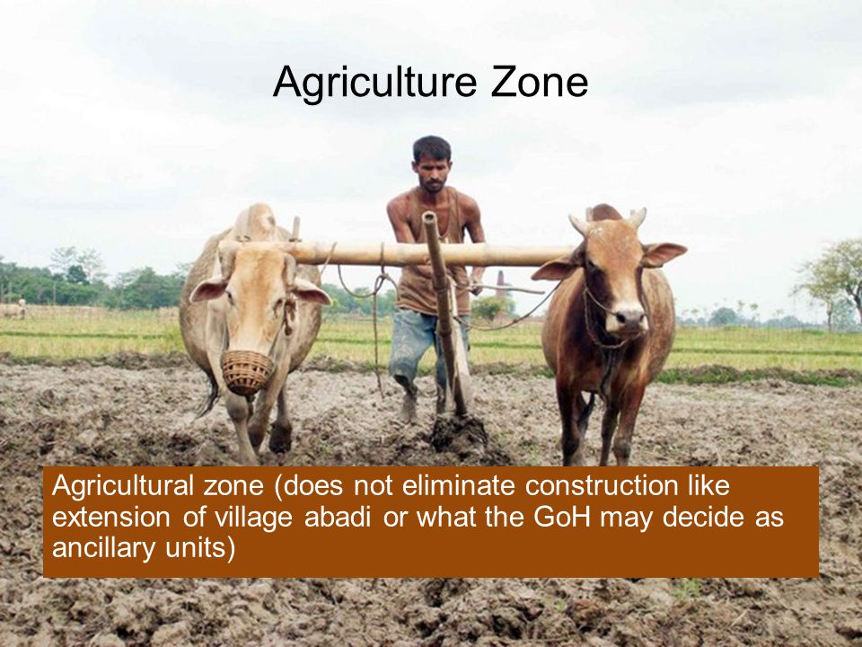 Agriculture Zone Agricultural zone (does not eliminate construction like extension of village abadi or what the GoH may decide as ancillary units)