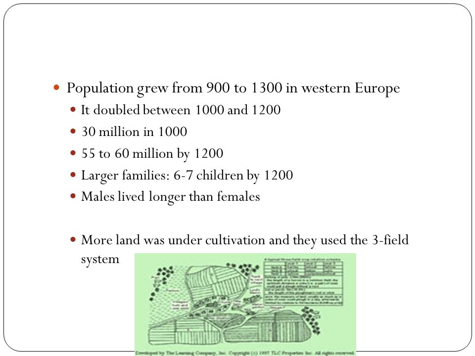 Population grew from 900 to 1300 in western Europe It doubled between 1000 and 1200 30 million in 1000 55 to 60 million by 1200 Larger families: 6-7 c