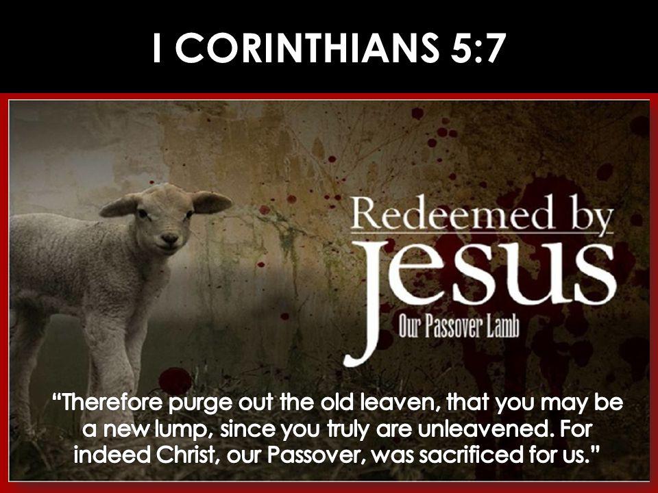 I CORINTHIANS 5:7