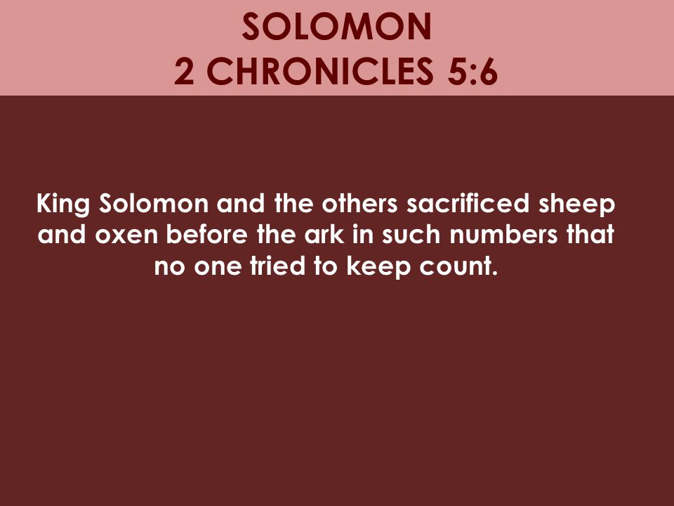 SOLOMON 2 CHRONICLES 5:6 King Solomon and the others sacrificed sheep and oxen before the ark in such numbers that no one tried to keep count.