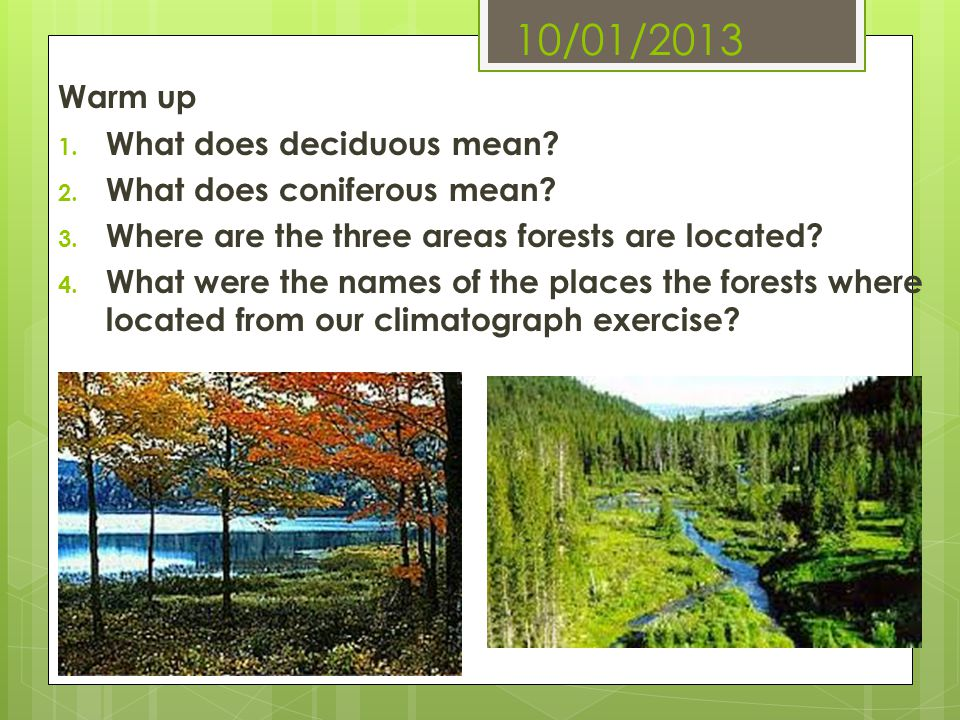 10/01/2013 Warm up 1. What does deciduous mean? 2. What does coniferous mean? 3. Where are the three areas forests are located? 4. What were the names