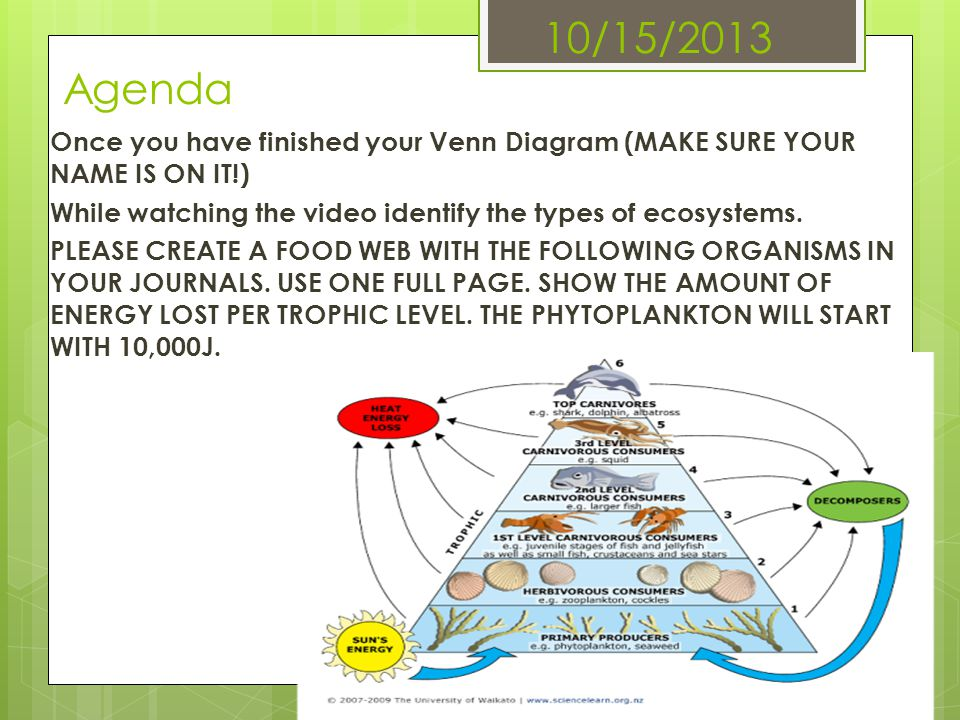 10/15/2013 Agenda Once you have finished your Venn Diagram (MAKE SURE YOUR NAME IS ON IT!) While watching the video identify the types of ecosystems.