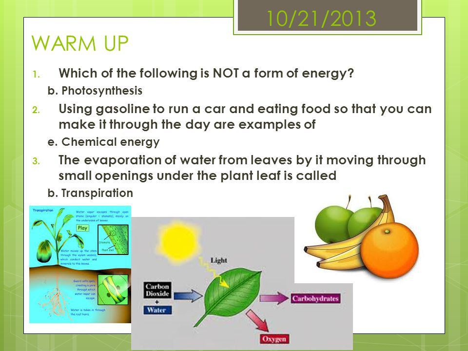 10/21/2013 WARM UP 1. Which of the following is NOT a form of energy? b. Photosynthesis 2. Using gasoline to run a car and eating food so that you can