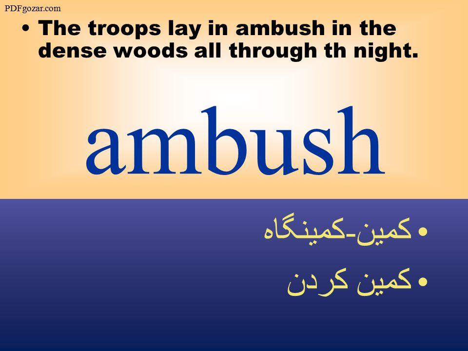 ambush The troops lay in ambush in the dense woods all through th night.