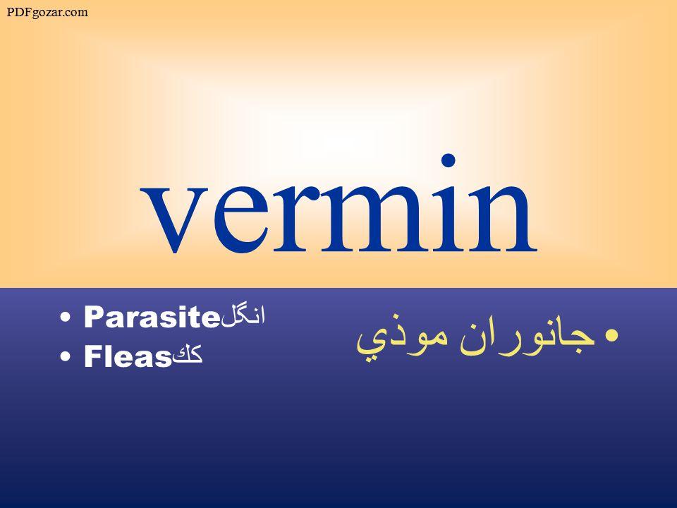 vermin Parasite انگل Fleas كك جانوران موذي PDFgozar.com