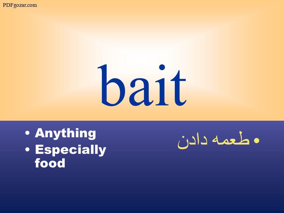 bait Anything Especially food طعمه دادن PDFgozar.com