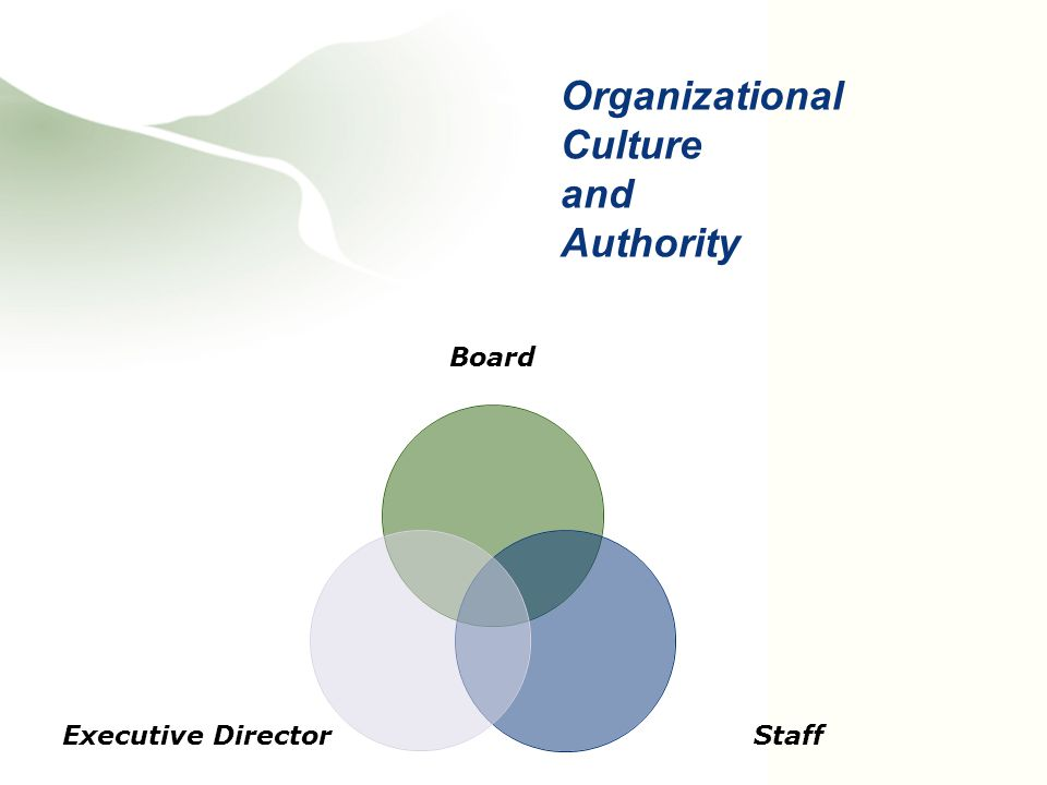 Board Staff Executive Director Organizational Culture and Authority