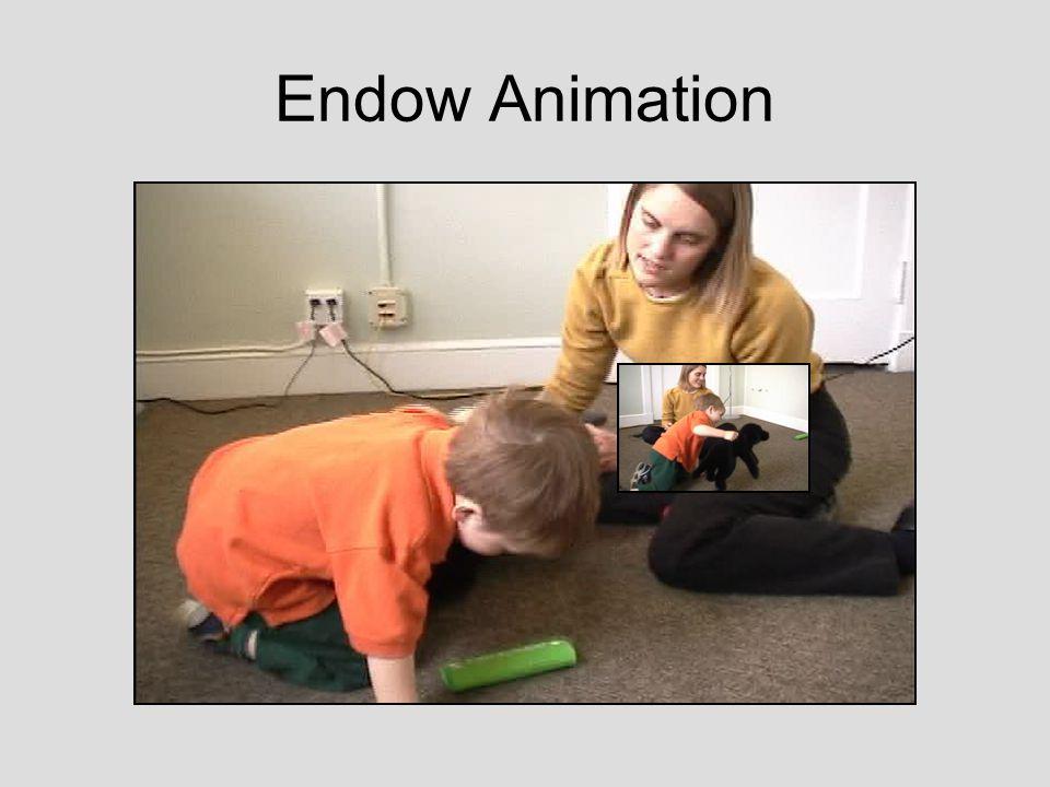 Endow Animation