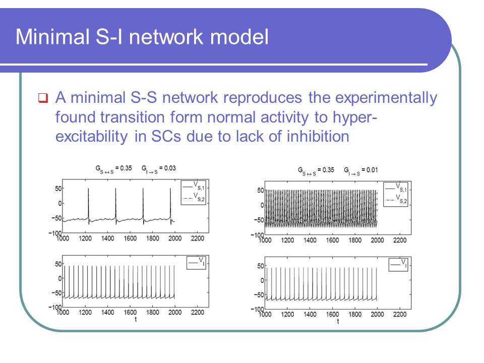  A minimal S-S network reproduces the experimentally found transition form normal activity to hyper- excitability in SCs due to lack of inhibition