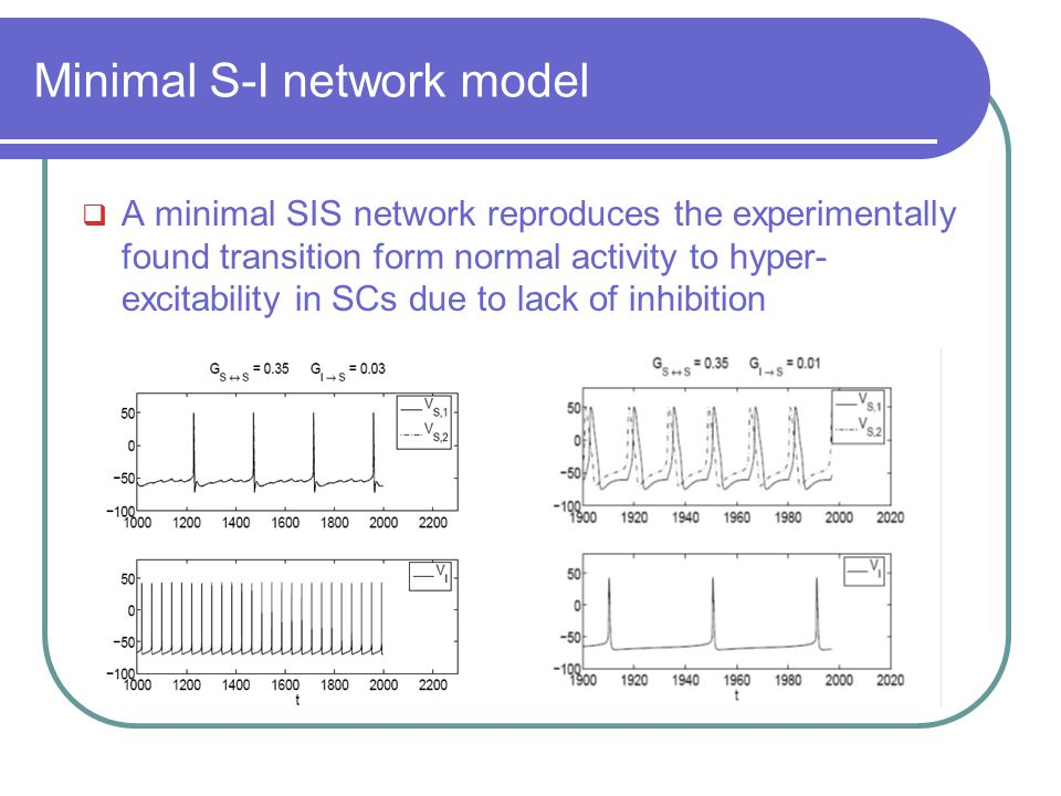 Minimal S-I network model  A minimal SIS network reproduces the experimentally found transition form normal activity to hyper- excitability in SCs du