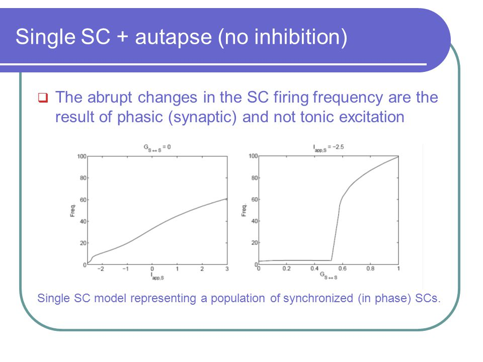 Single SC + autapse (no inhibition)  The abrupt changes in the SC firing frequency are the result of phasic (synaptic) and not tonic excitation Singl
