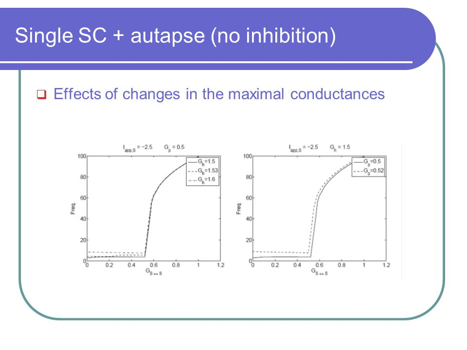 Single SC + autapse (no inhibition)  Effects of changes in the maximal conductances