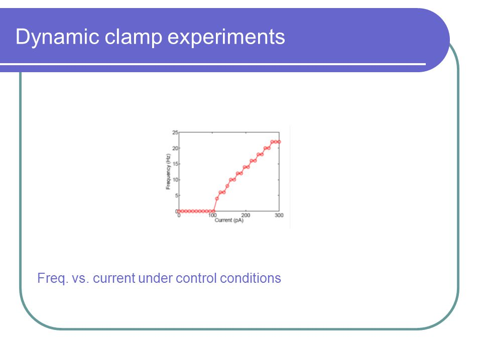 Dynamic clamp experiments Freq. vs. current under control conditions