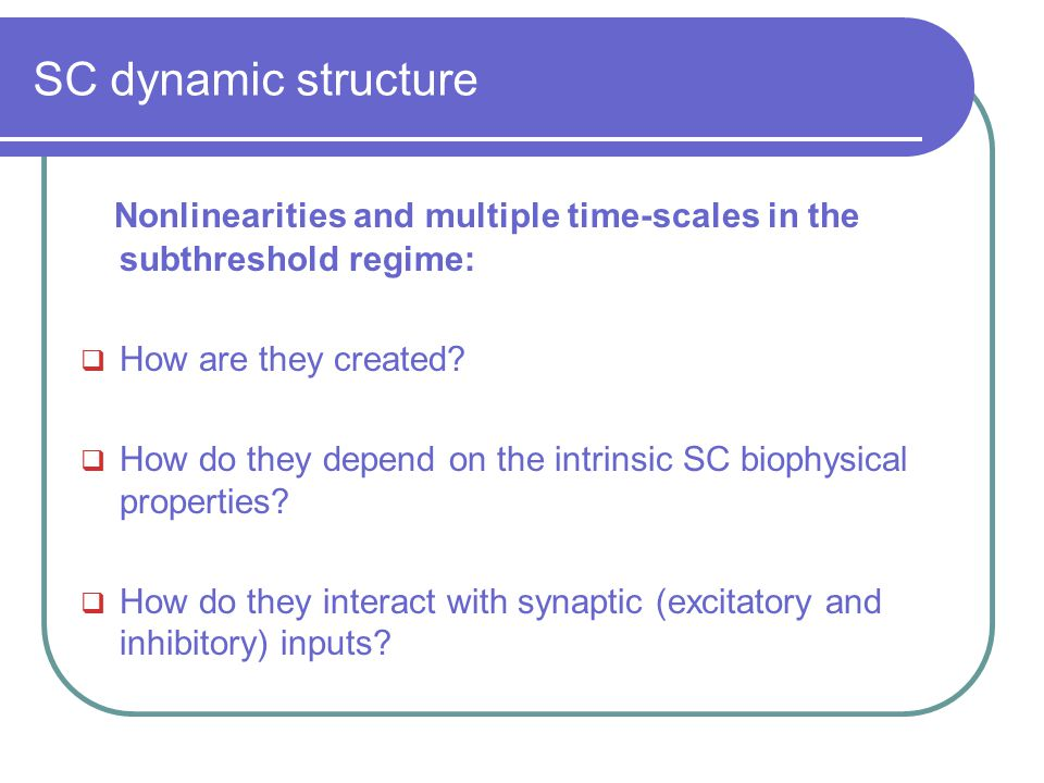 SC dynamic structure Nonlinearities and multiple time-scales in the subthreshold regime:  How are they created?  How do they depend on the intrinsic