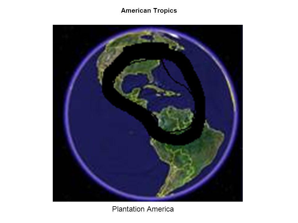 American Tropics Plantation America