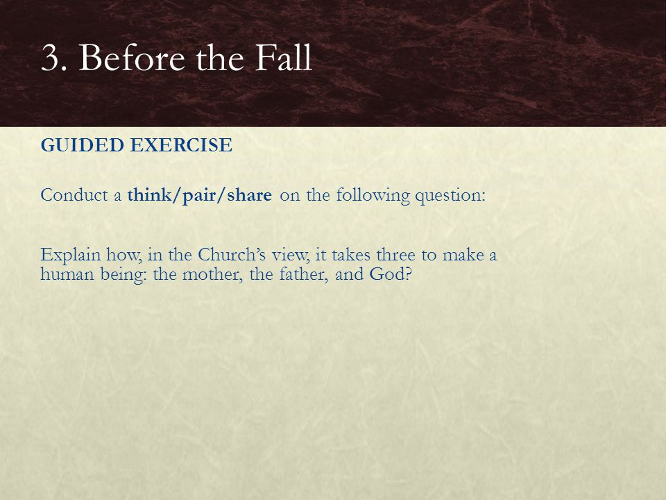 GUIDED EXERCISE Conduct a think/pair/share on the following question: Explain how, in the Church's view, it takes three to make a human being: the mot