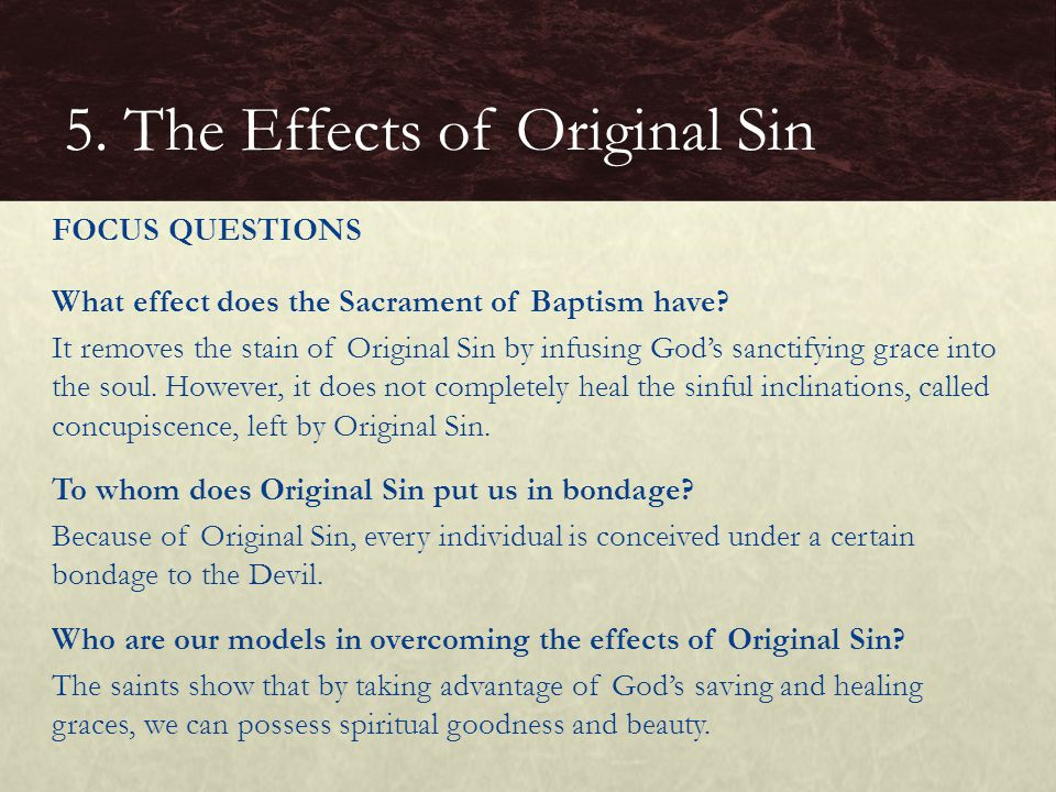 What effect does the Sacrament of Baptism have? It removes the stain of Original Sin by infusing God's sanctifying grace into the soul. However, it do